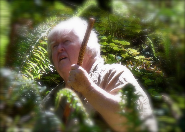 Marideth in the Redwood forest, 2011