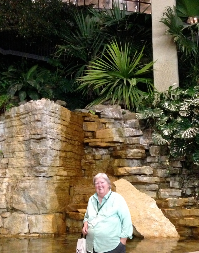 The waterfall level of the lobby in the Westin